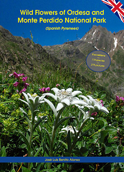 Wild Flowers of Ordesa and Monte Perdido National Park (Spanish Pyrenees)